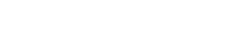 Playment Logo