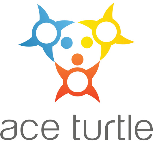 Ace Turtle Services