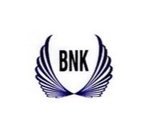 BNK Manifold Services Private Limited Logo