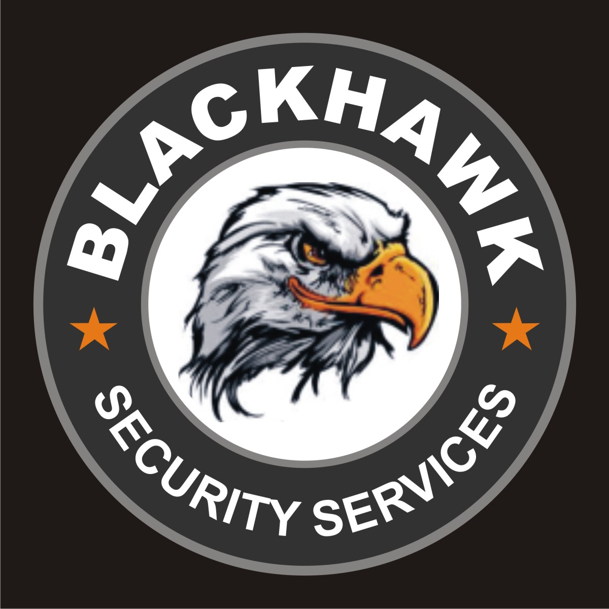 Blackhawk Security Services Logo